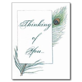 Thinking of You Peacock Feather Inspirational Post Card