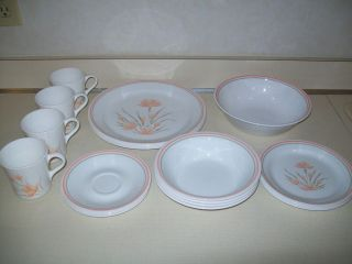 21 PC Service for 4 Corning Corelle Peach Floral Dinnerware Set Serving Bowl