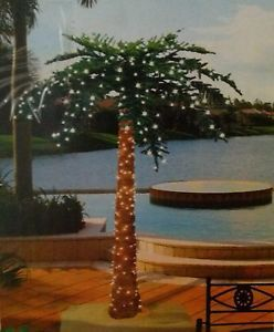 Pre Lit Palm Tree 6ft Sterling Inc Year Round or Christmas