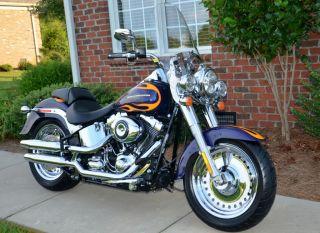 Harley Davidson Fatboy Engine Guard