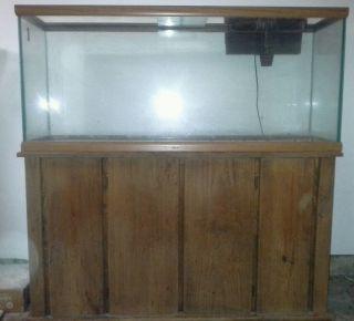 55 gallon fish tank top fin 55 gallon starter kit for 55 gallon fish tank kit