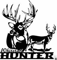 Whitetail Deer Buck Archery Gun Bow Hunting Decal Big