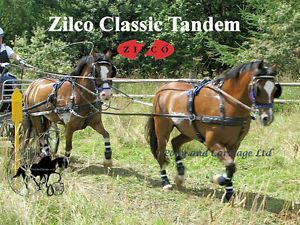 Zilco Black Tandem Classic Carriage Driving Horse Harness Std Collar Wipe Clean