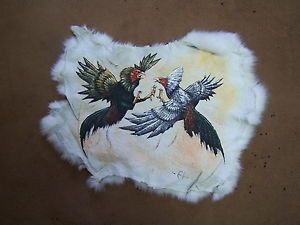 H Painted Fighting Roosters on Real Rabitt Skin Pelea de Gallos Game Fowl Giro