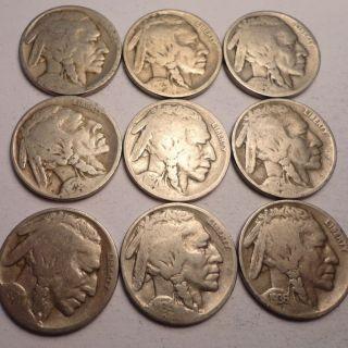 9 Different Date Mint Mark Buffalo Nickels Lot G41