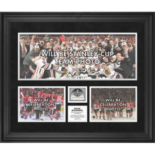 mounted memories nhl 2013 stanley cup champions framed 3 photograph