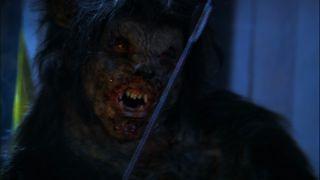 Big Bad Wolf Sexy Robin Sydney Buxom B Movie Babes vs Wolfman Gory Werewolf DVD 025195007986