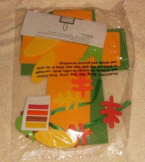 1 Foam Craft Kit Thanksgiving Turkey Indian Cross