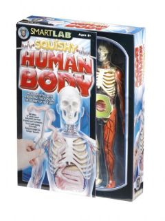Smartlab® Kit Explore The Human Body Anatomy Human Model Organs Bones