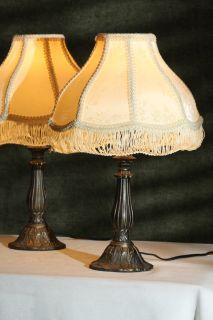 Victorian Style Glass Shade Beaded Fringe Boudoir Metal Base Table Lamp Light