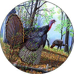 Turkey Custom Spare Tire Cover Wheel Cover