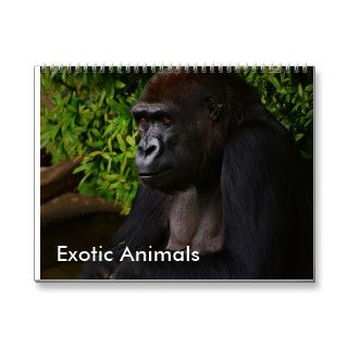 Exotic Animals calendar