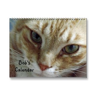 2014 Orange Tabby Cat Calendar Featuring Bob