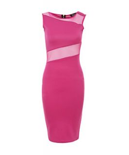 Te Amo Pink Mesh Insert Bodycon Midi Dress