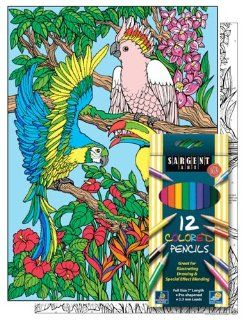 Tropical Birds   Color By Number Poster Set   Includes 12 Coloring Pencils Toys & Games