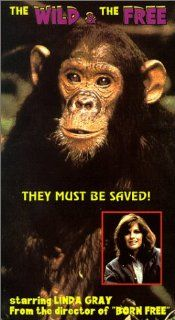 Wild and the Free [VHS]: Granville Van Dusen, Linda Gray, Frank Logan, Raymond Forchion, Sharon Anderson, Bill Gribble, Joan Murphy, Bruce McLaughlin, Fred Buch, Walter Zukovski, Jack McDermott, Shelley Spurlock, Neil Roach, James Hill, Douglas Schwartz, M