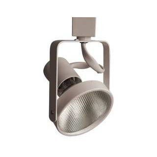 LumaPro 10F167 Track Fixture, 120V, Par 38: Industrial & Scientific