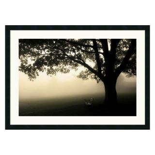 Shenandoah Framed Wall Art by Andy Magee   36W x 26H in.   Photography