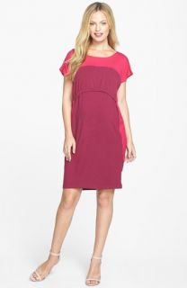 Japanese Weekend Colorblock Maternity/Nursing Dress
