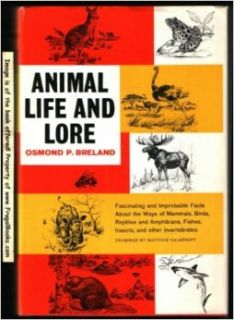 Animal Life and Lore: Osmond P. Breland, Matthew Kahmenoff: Books