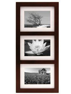 Malden 2083 346 Southlake 3 Opening matted Collage Frames, Walnut